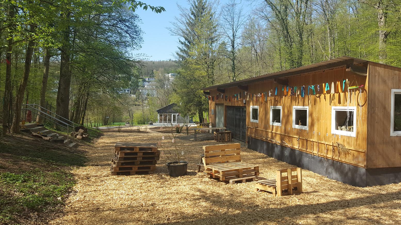 Waldgruppe Schutzhütte 2020